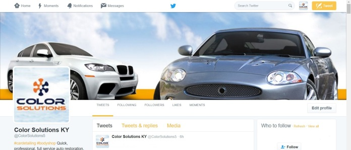 color-solutions-twitter